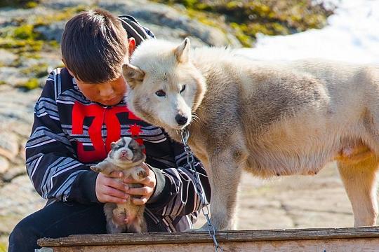 Западная Гренландия местные жители
